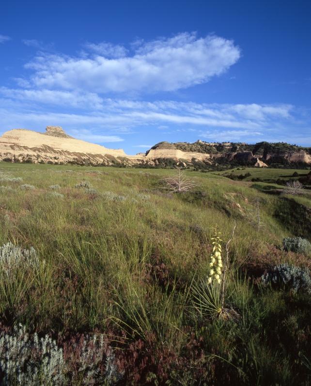 Landscape west of Mitchell Pass