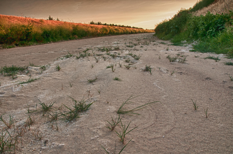 Platte River Location 05. Nebraska: Along th...