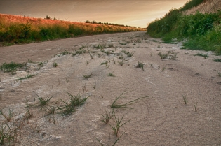 Dried out canal, effect of 2012 drought along the Platte River supply canal west of Paxton Nebraska.
