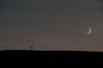 Moonset along Umatilla River Valley. Oregon.