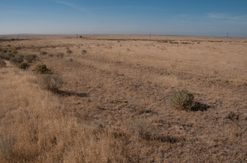 Pronounced trail ruts of the Oregon Trail east of Inscription Rock. Idaho
