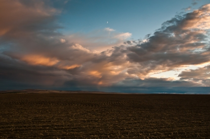 Evening light over plowed wheat fields along Umatilla River Valley, Oregon