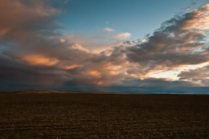 Evening light over plowed wheat fields along Umatilla River Valley, Oregon